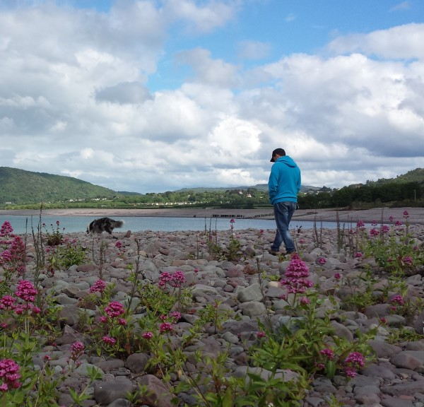 One dog and his man at Porlock Weir