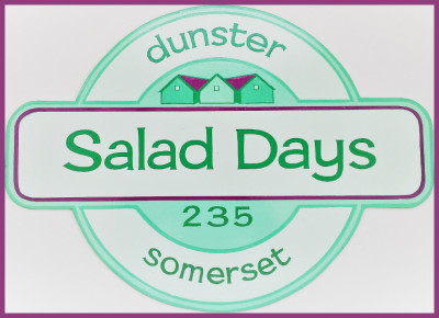 Salad Days, Dunster Beach, dunster, exmoor, somerset, beach hut, beach, hut, chalet, holiday, vacation, staycation