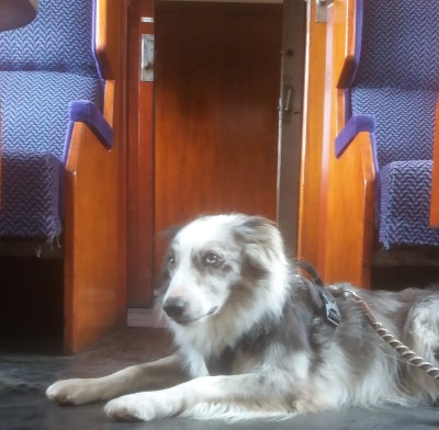 West Somerset Heritage Railway