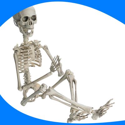 Esqueleto Articulable