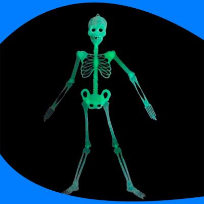 Esqueleto Glow