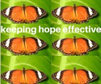 Butterflies Hope