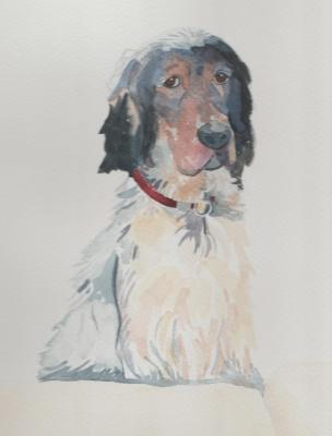 Sally's Dog, Jane Cornwell