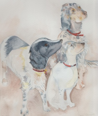 Spaniels and Setter by Jane Cornwell