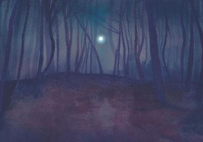 Birch Woods in Moonlight, Jane Cornwell