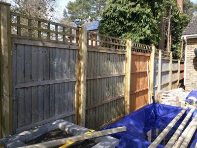 Red cedar Fenceing