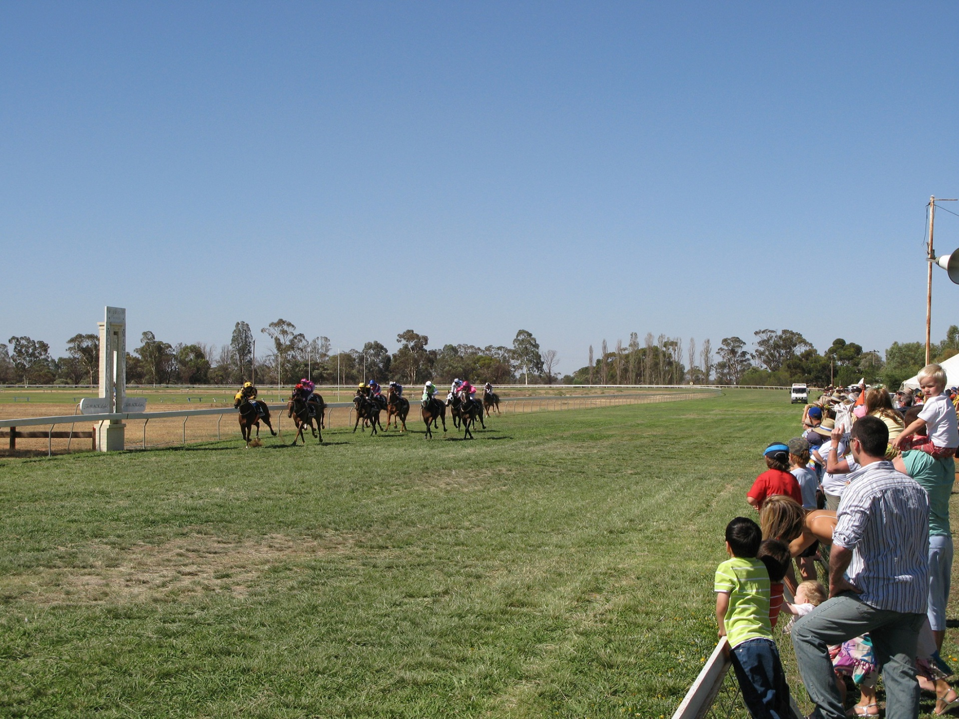 THE BALRANALD RACES