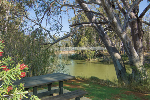 Overlooking the Murrumbidgee River and Swing Bridge at Balranald