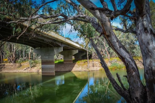 Bridge crossing the Murrumbidgee River at Balranald