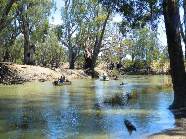 Fishing for cod on the Wakool River at Kyalite