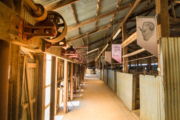 The Woolshed at Yanga National Park