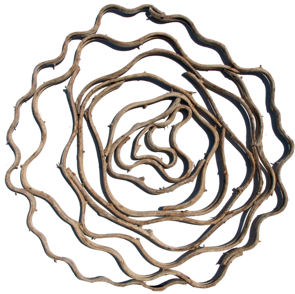 "circle vine wall art 28"" made with tropical vine"