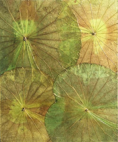 natural wall art lotus leaf wall hanging
