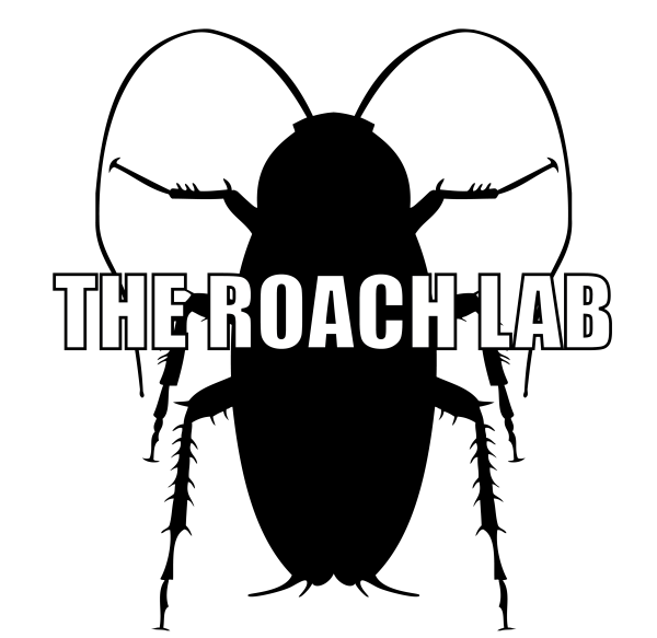 The Roach Lab - logo. live and preserved roaches for sale