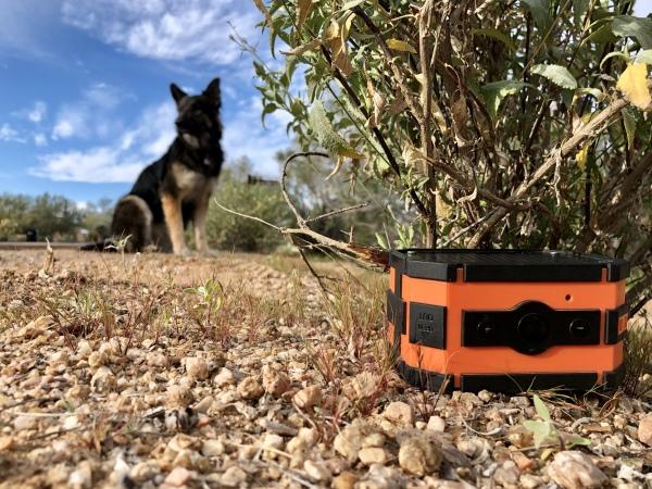 bluetooth speaker under bush dog in background