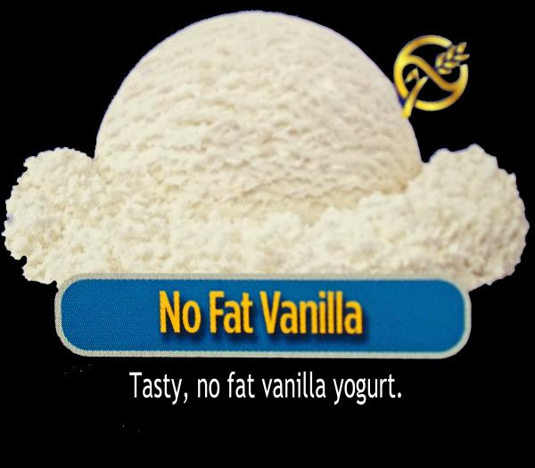 No Fat Vanilla Yogurt
