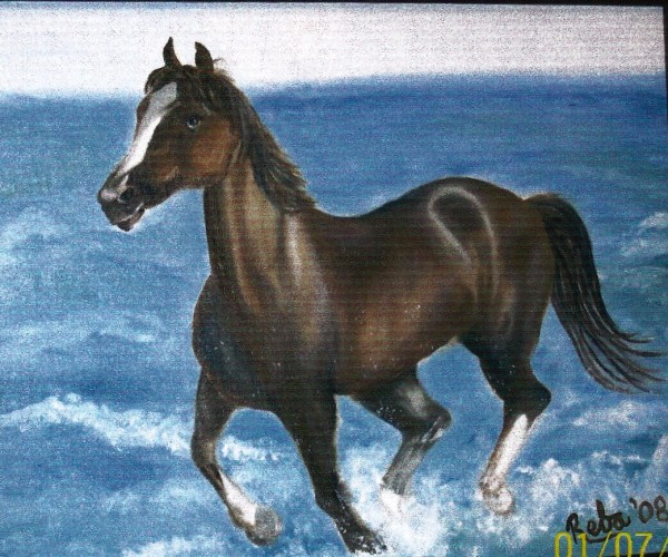 Horse in Oceon Surf