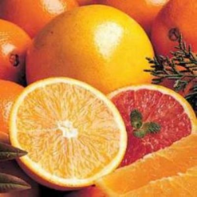 Annual JHS Band Fruit Sale now thruough November 8, 2017