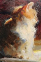 Stephanie Paige Thomson, Stephanie's Sketches, Oil Painting, Cat Painting, Fuzzy Kitten, Strong Light, Transparency and Opaques, Brushwork, Oil Painting