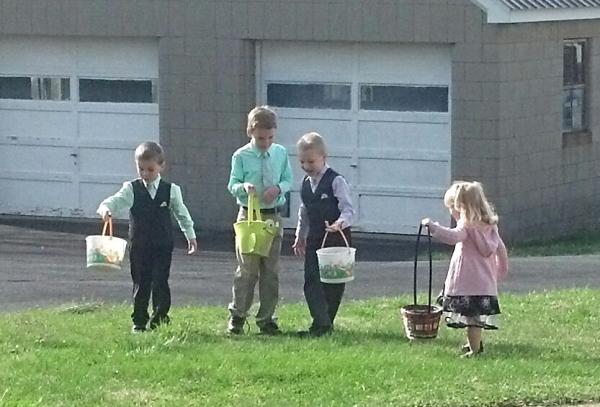 Sharing their eggs