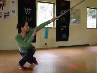 Shi Mei Lin Crouching Sword