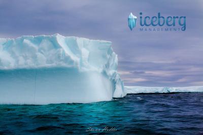 Iceberg Management