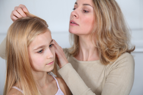 Head Lice Lurking?