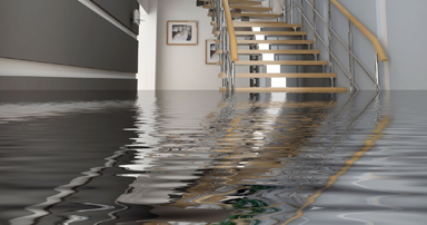 water damage restoration services london ontario