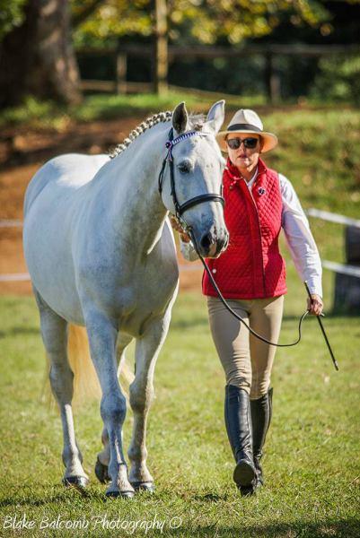 Jo-Jo's Horse Riding