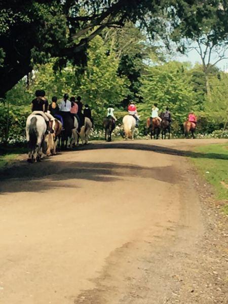 Alverstone Horse Riding