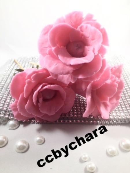 Strawberry chocolate rose