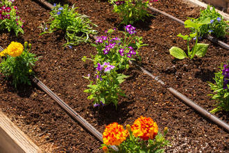 Is Drip Irrigation Right For Your Plant Beds?