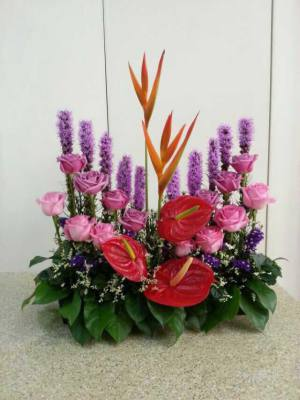 Amazing Flowers - Contact Us