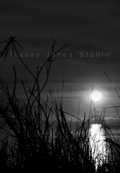 ...silvery moon 1.