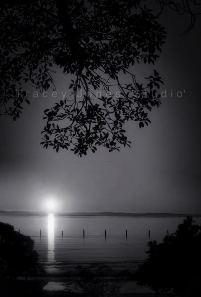 ...silvery moon 2.