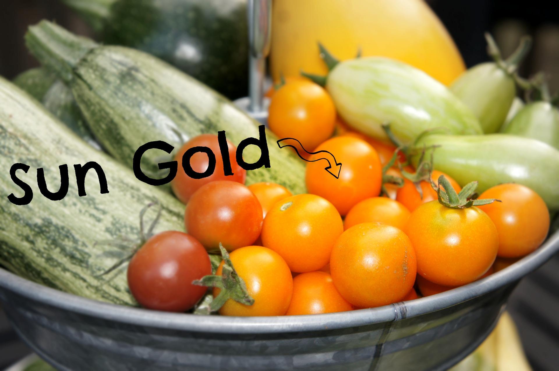 Sun Gold Tomatoe and other Veggies