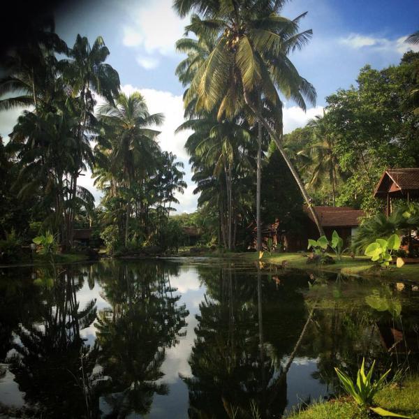 BOTANICAL ADVENTURE, EAST COAST, MALAYSIA
