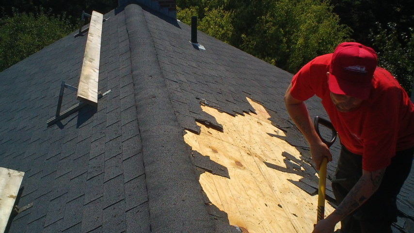 roofer, roofing, roof contractor, roof company, roofing company, roof companies, roofing companies, general contractor