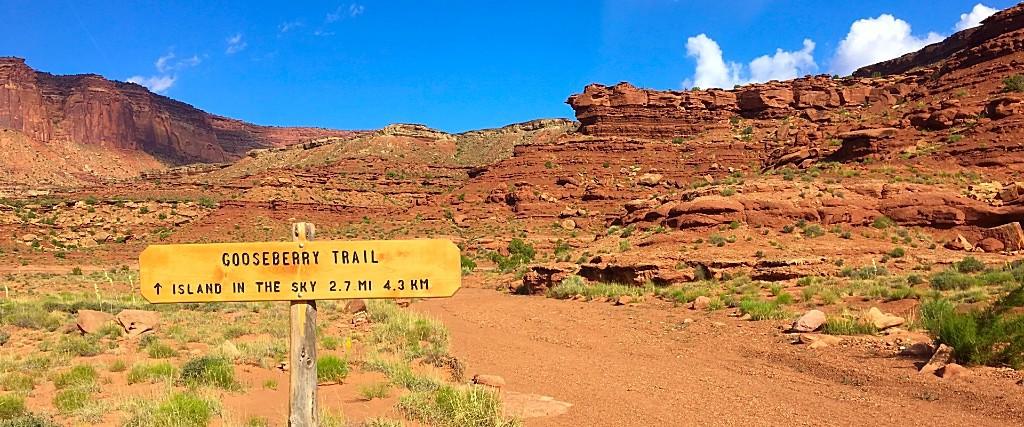 Running the white rim trail