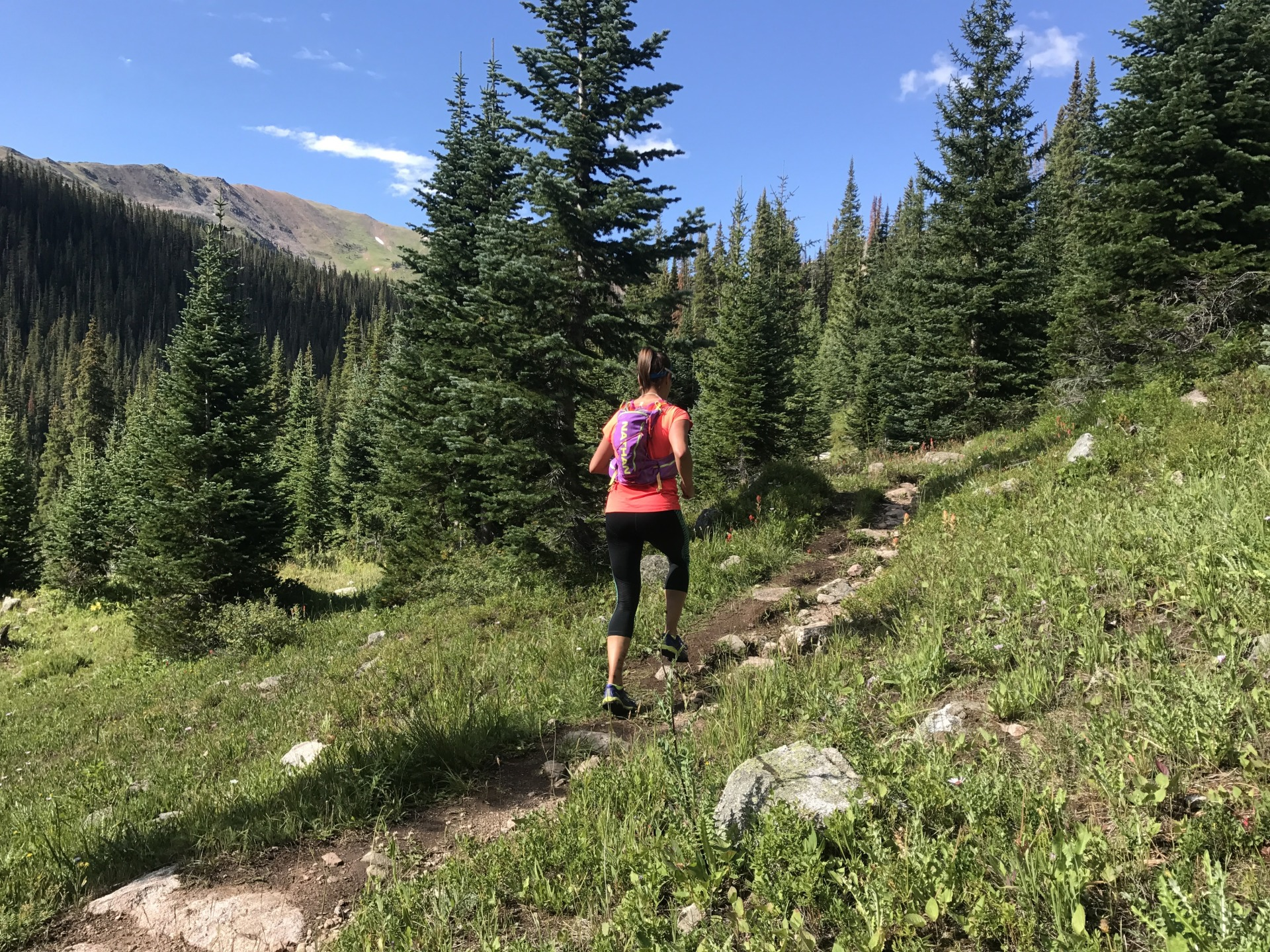 Running Buffalo Mountain Loop