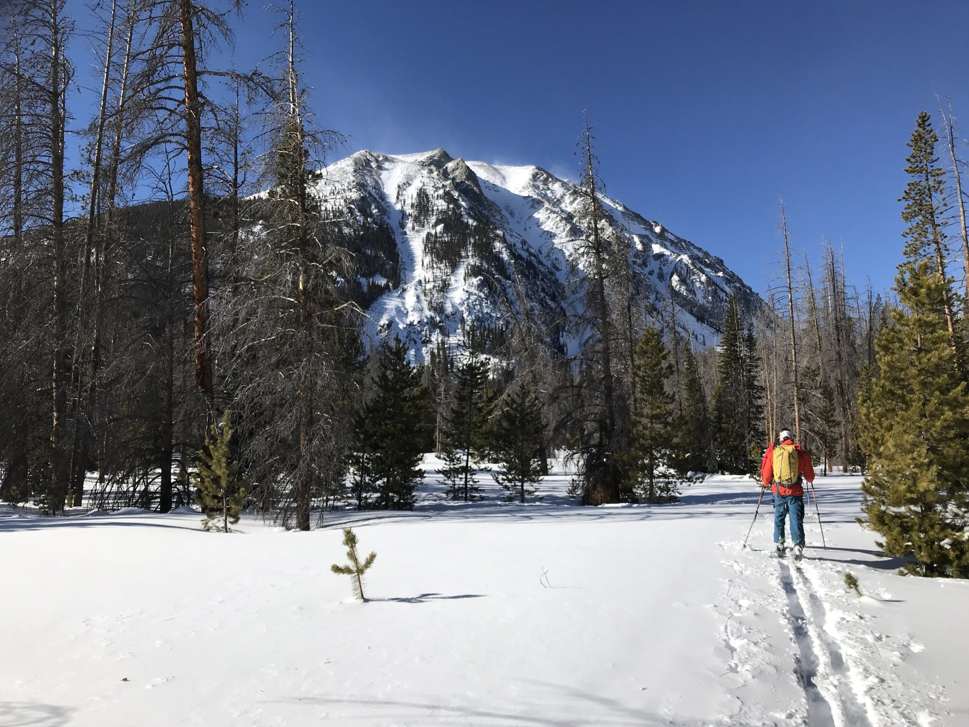 Buffalo Mountain Loop on Skis