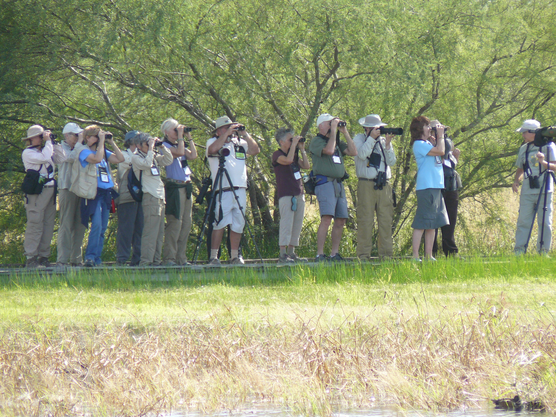 Are Birding Festivals Worth the Money?
