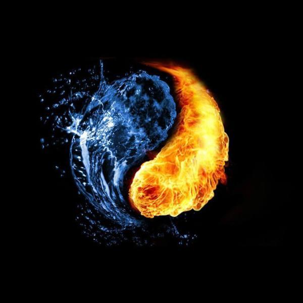 Yin and Yang Academic.....
