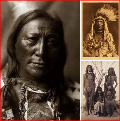 The Academic of the Indian Tribe and Skin Tone.....The Indigenous ,Innate so-called Ameriica