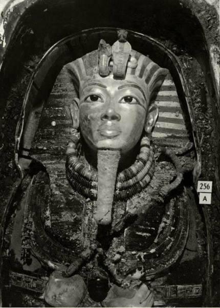 Mathematics......King Tutankhamen(King tut) Tutankhaten