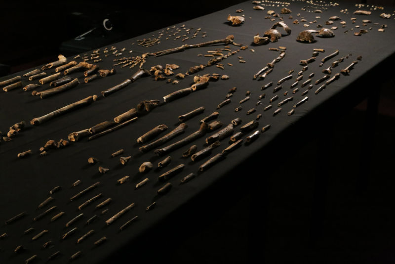 The Homo Naledi.....4 Million Year old Africans found