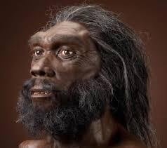 Homo Heidelbergensis......700,000 Year Old African Asiatic Migration to Asia and Europe