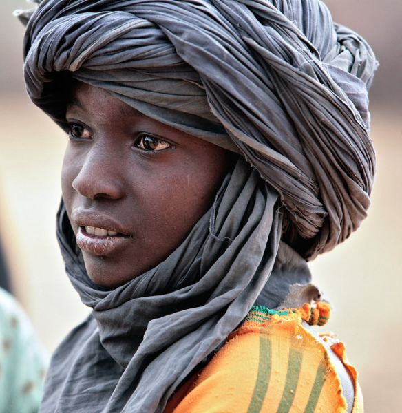 The Indigenous Berbers of Africa.......