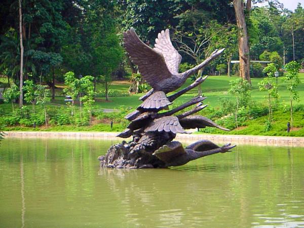 Swan Family @ Singapore Botanic Garden
