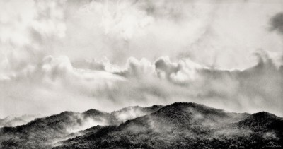 Misty Morn( West coast )